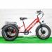 Электровелосипед трицикл VEGA BIG HAPPY FAT 500 (красный, 500W/48V/10Ah/LCD), VEGA BIG HAPPY FAT 500, Электровелосипед трицикл VEGA BIG HAPPY FAT 500 (красный, 500W/48V/10Ah/LCD) фото, продажа в Украине