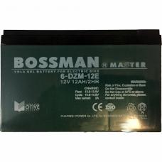 Аккумулятор BOSSMAN 6-DZM12 E для электровелосипеда, BOSSMAN 6-DZM12 E, Аккумулятор BOSSMAN 6-DZM12 E для электровелосипеда фото, продажа в Украине
