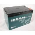 BOSSMAN 6-DZM14 E (Акумулятор BOSSMAN 6-DZM14 E для електровелосипеда (під гвинти))