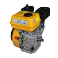 Двигатель бензиновый Forte F210GS-20 (20 мм,7 л.с, шпонка), Forte F210GS-20 (20 мм,7 л.с, шпонка), Двигатель бензиновый Forte F210GS-20 (20 мм,7 л.с, шпонка) фото, продажа в Украине