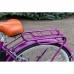 Электровелосипед Vega Family S (серый, красный), Vega Family S (серый, красный), Электровелосипед Vega Family S (серый, красный) фото, продажа в Украине