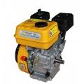 Двигатель бензиновый Forte F210GT-25 (25 мм,7 л.с, шлиц), Forte F210GT-25 (25 мм,7 л.с, шлиц), Двигатель бензиновый Forte F210GT-25 (25 мм,7 л.с, шлиц) фото, продажа в Украине