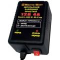 Импульсное зарядное устройство MASTER WATT 12В 4А, MASTER WATT 12В 4А, Импульсное зарядное устройство MASTER WATT 12В 4А фото, продажа в Украине