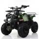 Детский квадроцикл Profi HB-EATV 1000D-10 зеленый, Profi HB-EATV 1000D-10 зеленый, Детский квадроцикл Profi HB-EATV 1000D-10 зеленый фото, продажа в Украине