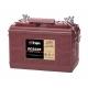 Тяговый/стартерный свинцово-кислотный аккумулятор Trojan SCS225 (12В, 130Ач), Trojan SCS225 (12В, 130Ач), Тяговый/стартерный свинцово-кислотный аккумулятор Trojan SCS225 (12В, 130Ач) фото, продажа в Украине