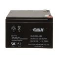 CASIL CA-12120 (Акумуляторна батарея CASIL CA-12120)
