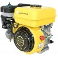 Двигатель внутреннего сгорания ДВЗ-200БГ , ДВЗ-200БГ, Двигатель внутреннего сгорания ДВЗ-200БГ  фото, продажа в Украине