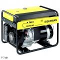 Бензиновый генератор EISEMANN P7401 купить, фото