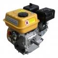 Двигатель FORTE F200G купить, фото