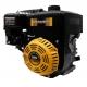 Двигатель TEXAS POWERLINE TG650B, TEXAS POWERLINE TG650B, Двигатель TEXAS POWERLINE TG650B фото, продажа в Украине